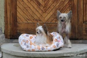 FOTO – Plyšový pelíšek pro psy od For My Dogs. Měkoučké bočnice, nadýchaný vyjímatelný polštář, celý pelíšek je vyrobený z plyšového flísu. Barva béžová.