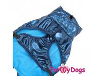 Obleček pro psy i fenky malých až středních plemen – stylová pláštěnka BLUE JACKET od ForMyDogs. Zapínání na sponu, hladká podšívka. (2)