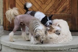 FOTO – Huňatý pelíšek pro psy i kočky od I LOVE PETS – měkké bočnice, vyjímatelný polštář, materiál luxusní soft fleece s dlouhým vlasem (5).