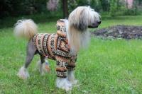 FOTO – Obleček pro psy i fenky – světle hnědá mikina se vzorem od For My Dogs