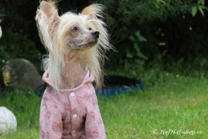 FOTO – Oblečky pro psy i fenky – růžová mikina z měkké pleteniny PINK BOW (3)