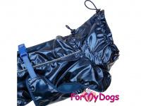 Obleček pro psy i fenky malých až středních plemen – stylová pláštěnka BLUE od ForMyDogs. Zapínání na sponu, hladká podšívka. Barva modrá. (11)