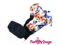Obleček pro psy – sinteponem zateplený zimní overal DOGS od ForMyDogs. Vylepšené zapínání na zádech, odnímatelná kapuce, plyšová podšívka. (5)