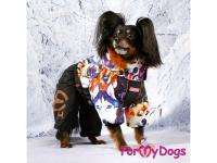 Obleček pro psy – sinteponem zateplený zimní overal DOGS od ForMyDogs. Vylepšené zapínání na zádech, odnímatelná kapuce, plyšová podšívka. (6)