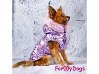 Obleček pro psy i fenky malých až středních plemen – zimní bunda LILIAC od ForMyDogs. Barva fialová. (FOTO)
