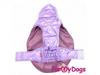 Obleček pro psy i fenky malých až středních plemen – zimní bunda LILIAC od ForMyDogs. Barva fialová. (5)