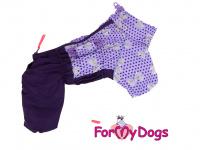 Obleček pro fenky – fialový, sinteponem zateplený zimní overal PURPLE DOTS od ForMyDogs. Hedvábná podšívka, barva fialová. (4)
