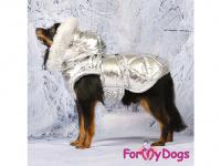Obleček pro psy i fenky malých až středních plemen – zimní bunda SILVER od ForMyDogs. Barva stříbrná. (FOTO 7)