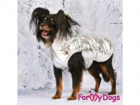 Obleček pro psy i fenky malých až středních plemen – zimní bunda SILVER od ForMyDogs. Barva stříbrná. (FOTO 8)
