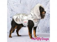 Obleček pro psy i fenky malých až středních plemen – zimní bunda SILVER od ForMyDogs. Barva stříbrná. (FOTO 9)