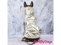 Obleček pro psy i fenky malých až středních plemen – zimní bunda SILVER od ForMyDogs. Barva stříbrná. (FOTO 3)