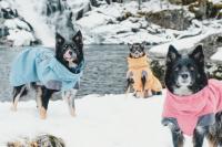 HURTTA – Outdoorový zimní obleček pro psy pro jejich dokonalý teplotní a pocitový komfort. Voděodolný a snadno udržovatelný materiál, termoizolační podšívka, 3M reflexní prvky. Barva modrá – borůvková. (6)