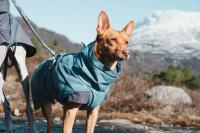 HURTTA – Outdoorový zimní obleček pro psy pro jejich dokonalý teplotní a pocitový komfort. Voděodolný a snadno udržovatelný materiál, termoizolační podšívka, 3M reflexní prvky. Barva modrá (borůvková).
