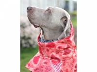 Extra zateplený outdoorový zimní obleček pro psy HURTTA. Voděodolný a snadno udržovatelný materiál, termoizolační folie udržující teplo, 3M reflexní prvky. Barva červená, vzor CORAL CAMO. (FOTO 2)