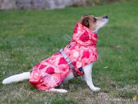 Extra zateplený outdoorový zimní obleček pro psy HURTTA. Voděodolný a snadno udržovatelný materiál, termoizolační folie udržující teplo, 3M reflexní prvky. Barva červená, vzor CORAL CAMO. (FOTO)