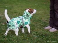 Extra zateplený outdoorový zimní obleček pro psy HURTTA. Voděodolný a snadno udržovatelný materiál, termoizolační folie udržující teplo, 3M reflexní prvky. Barva zelená, vzor PARK CAMO. (FOTO 3)