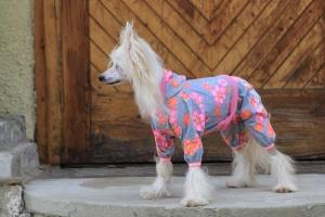 FOTO – Obleček pro psy i fenky – overal DAISIES s květinovým vzorem
