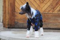 FOTO – Obleček pro psy i fenky – overal TIGER BLACK (4)