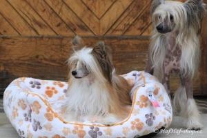 FOTO – Plyšový pelíšek pro psy od For My Dogs. Měkoučké bočnice, nadýchaný vyjímatelný polštář, celý pelíšek je vyrobený z plyšového flísu. Barva béžová (2).