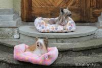 FOTO – Plyšový pelíšek pro psy od For My Dogs. Měkoučké bočnice, nadýchaný vyjímatelný polštář, celý pelíšek je vyrobený z plyšového flísu. Barva růžová (4).
