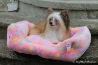 FOTO – Plyšový pelíšek pro psy od For My Dogs. Měkoučké bočnice, nadýchaný vyjímatelný polštář, celý pelíšek je vyrobený z plyšového flísu. Barva růžová.