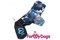 Obleček pro psy malých až středních plemen – lehoučká pláštěnka BLUE od For My Dogs. (3)