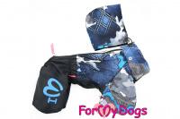Obleček pro psy malých až středních plemen – lehoučká pláštěnka BLUE od For My Dogs. (4)