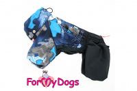 Obleček pro psy malých až středních plemen – lehoučká pláštěnka BLUE od For My Dogs. (5)