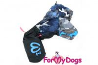 Obleček pro psy malých až středních plemen – lehoučká pláštěnka BLUE od For My Dogs.