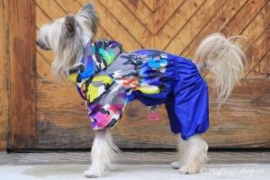 FOTO – Pláštěnka pro psy od FMD – nový super komfortní a funkční model COLOURFUL CAMOUFLAGE (2)