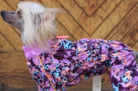FOTO – Obleček pro psy – světle fialová pláštěnka pro fenky ForMyDogs LILLAC (4)
