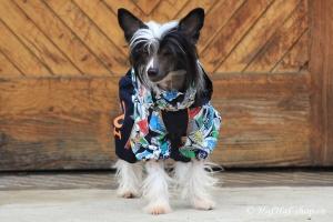 FOTO – Obleček pro psy – pláštěnka FMD, nový super komfortní a funkční model SNEAKERS (2)