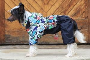 FOTO – Obleček pro psy – pláštěnka FMD, nový super komfortní a funkční model SNEAKERS (3)