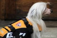 FOTO – plovací vesta pro psy od EZYDOG s unikátní vztlakovou pěnou, reflexními prvky a pohodlnou a promyšlenou konstrukcí, žlutá (3).