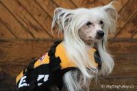 FOTO – plovací vesta pro psy od EZYDOG s unikátní vztlakovou pěnou, reflexními prvky a pohodlnou a promyšlenou konstrukcí, žlutá (4).