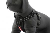 Postroj pro psy značky EZYDOG je ergonomický a pohodlný postroj s polstrovanou hrudní výstuží a odnímatelným pásem pro připnutí psa v autě. (6)