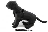 Postroj pro psy značky EZYDOG je ergonomický a pohodlný postroj s polstrovanou hrudní výstuží a odnímatelným pásem pro připnutí psa v autě. (2)