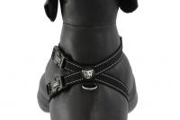 Postroj pro psy značky EZYDOG je ergonomický a pohodlný postroj s polstrovanou hrudní výstuží a odnímatelným pásem pro připnutí psa v autě. (8)