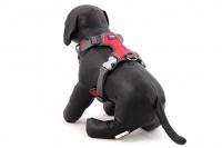 Nastavitelný postroj pro psy od RED DINGO vhodný pro každodenní používání díky podšívce z jemného flísu. Reflexní prvky, dva úchyty na vodítko, barva červená. (5)