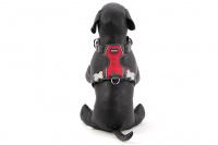 Nastavitelný postroj pro psy od RED DINGO vhodný pro každodenní používání díky podšívce z jemného flísu. Reflexní prvky, dva úchyty na vodítko, barva červená. (6)