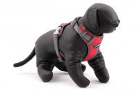 Nastavitelný postroj pro psy od RED DINGO vhodný pro každodenní používání díky podšívce z jemného flísu. Reflexní prvky, dva úchyty na vodítko, barva červená. (7)
