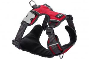 Nastavitelný postroj pro psy od RED DINGO vhodný pro každodenní používání díky podšívce z jemného flísu. Reflexní prvky, dva úchyty na vodítko, barva červená.
