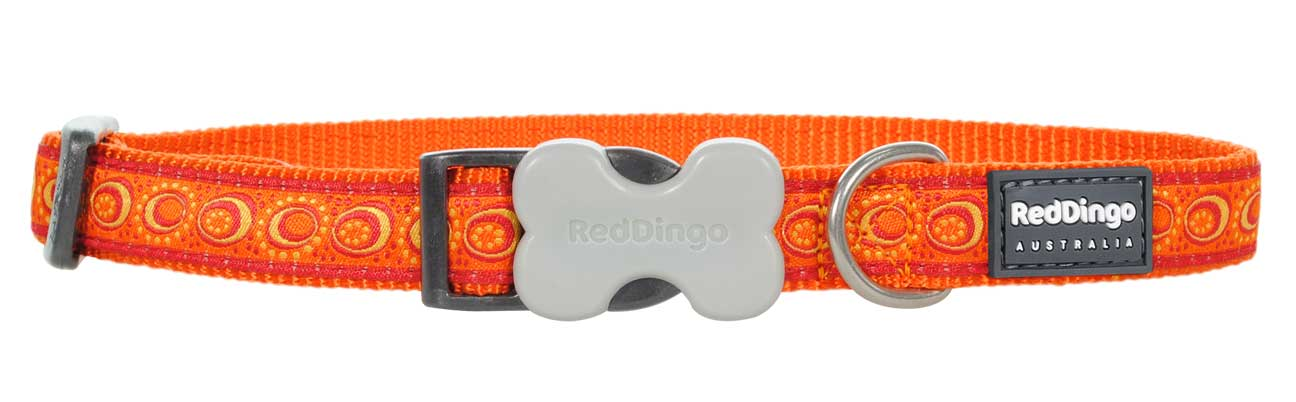 Obojek pro psa RED DINGO – Cosmos Orange