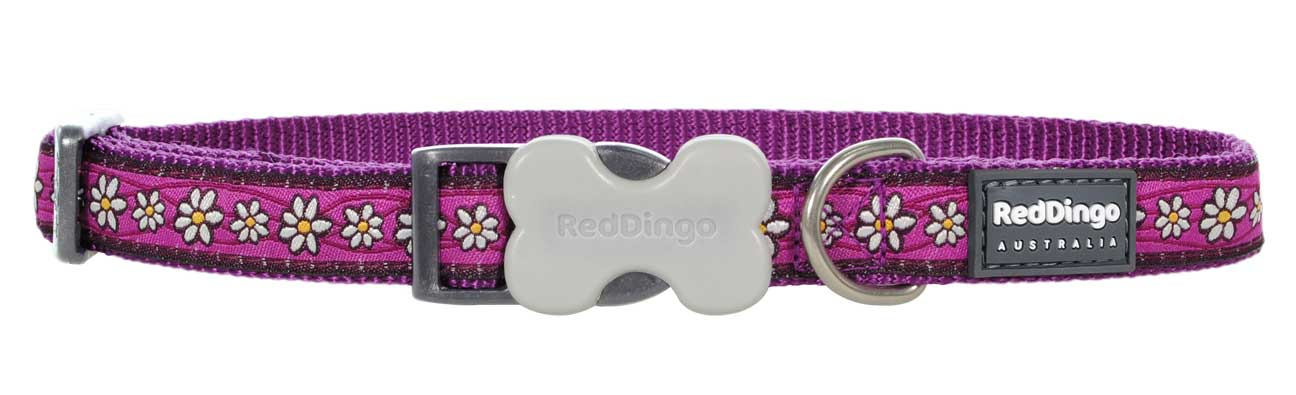 Obojek pro psa RED DINGO – Daisy Chain Purple