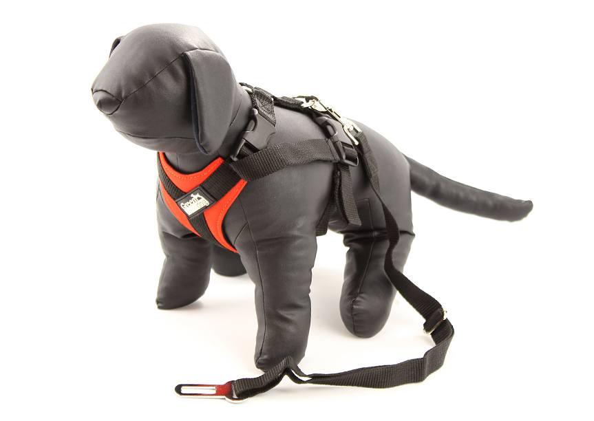 Bezpečnostní postroj pro psy do auta