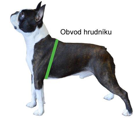 Měření psa – obvod hrudníku